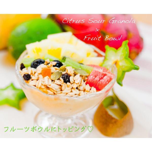 No.7 Citrus Sour (シトラスサワー) cocolokyoto