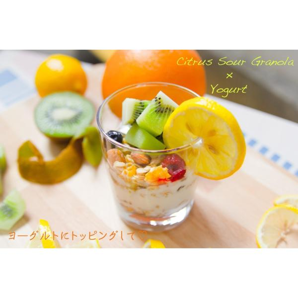 No.7 Citrus Sour (シトラスサワー) cocolokyoto 03
