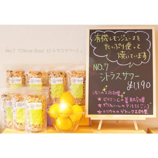 No.7 Citrus Sour (シトラスサワー) cocolokyoto 05