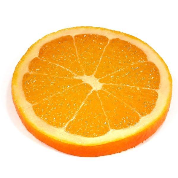 食べちゃいそうな食品サンプルフルーツコースターSサイズ オレンジ coconuts-ac