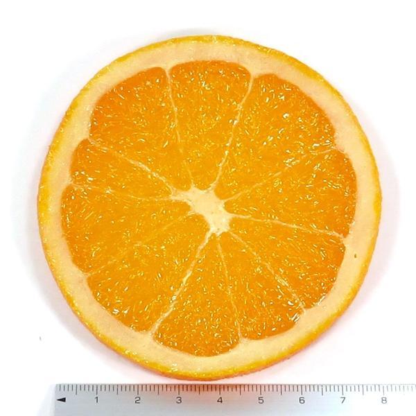 食べちゃいそうな食品サンプルフルーツコースターSサイズ オレンジ coconuts-ac 03