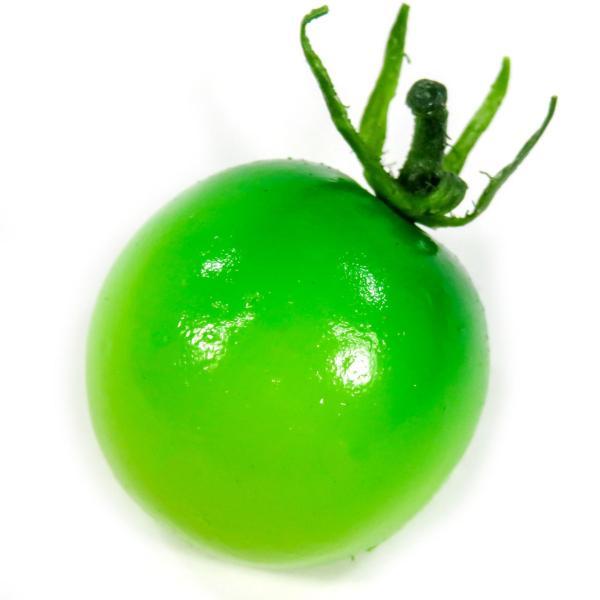 食べちゃいそうなミニトマト 食品サンプル マグネット coconuts-ac 12