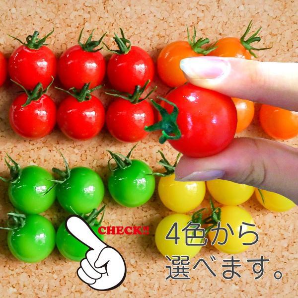 食べちゃいそうなミニトマト 食品サンプル マグネット coconuts-ac 03