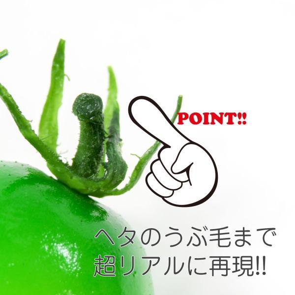 食べちゃいそうなミニトマト 食品サンプル マグネット coconuts-ac 07