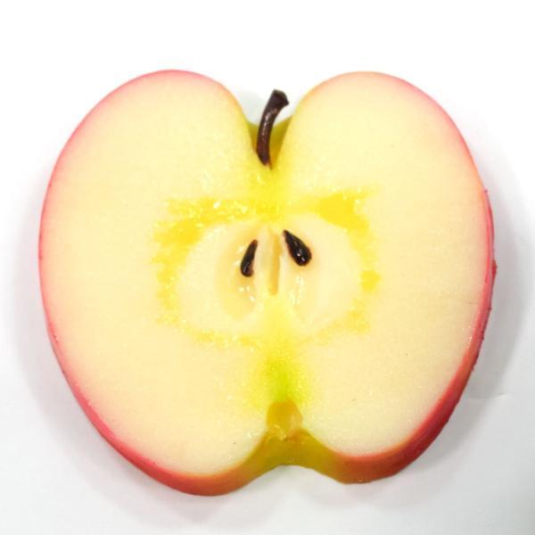 食べちゃいそうな食品サンプルコースター リンゴ|coconuts-ac