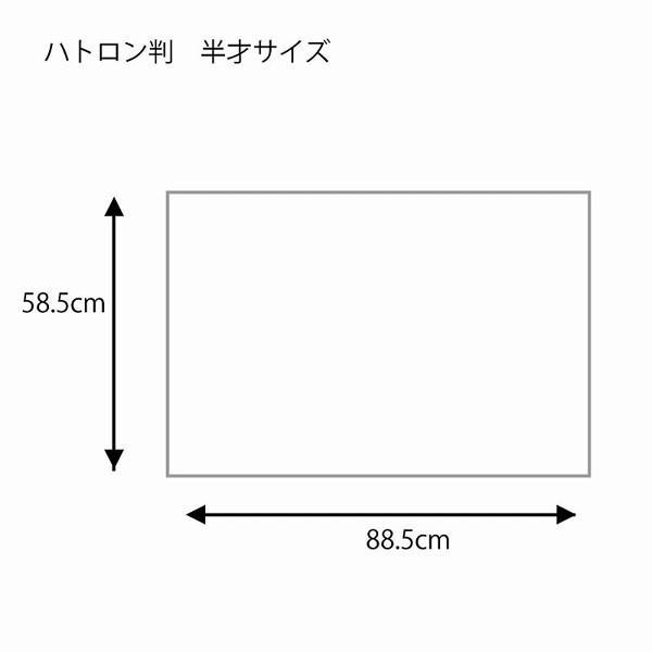 HEIKO(ヘイコー):包装紙 ハトロン判半才 未晒エデン 50枚 002403021|cocoterrace|04
