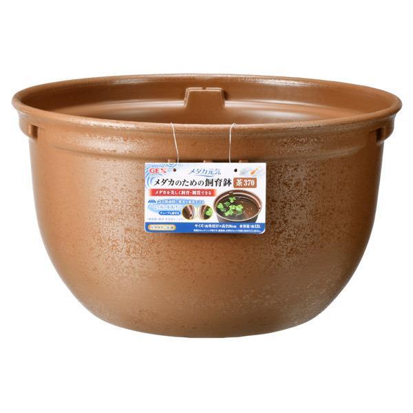 ジェックス:メダカ元気メダカのための飼育鉢茶370アクアリウムめだか水槽鉢はち屋外容器飼育