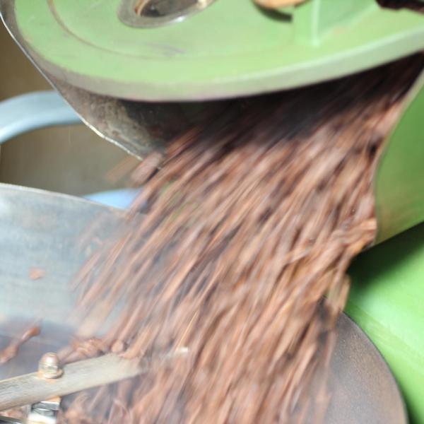 コーヒー豆 元祖!訳ありコーヒー  単一銘柄=ブレンド無し 10g|coffee|03