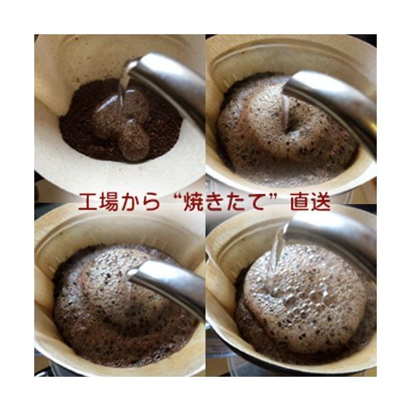 コーヒー豆 ケニアスペシャルティセット セール|coffee|04