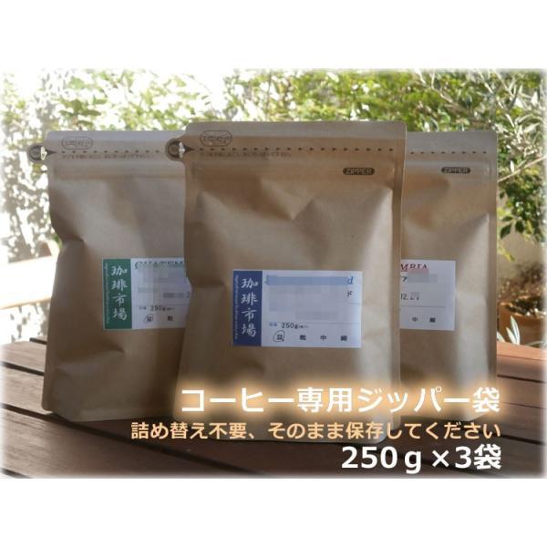 コーヒー豆 マンデリンスペシャルティセット|coffee|05