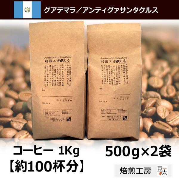 コーヒー豆 1kg サンタクルス農園 グァテマラ 単一農園|coffee