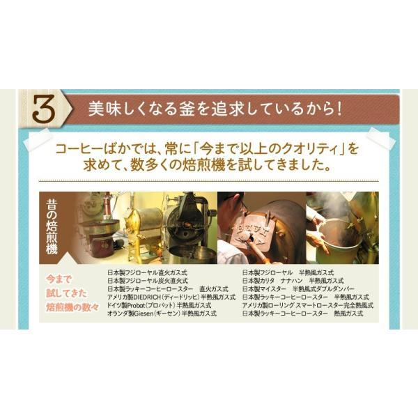 コーヒー豆 人気『キリマンジャロの雫』 -250g-(メール便)コーヒー豆|coffeebaka|07