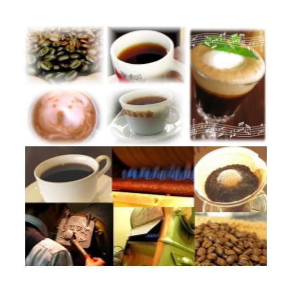 コーヒー豆 200g 宅急便 アロマブレンド『キリマンジャロの雫/コーヒー/珈琲/珈琲豆/こーひー/こーひーまめ/粉/業務用/|coffeebaka|02