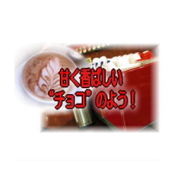 ギフト コーヒー 送料無料/エスプレッソ 本場イタリア・フィレンツェ・ブレンド/500g 50杯〜75杯/スイート・チョコレートのような風味 /食品/