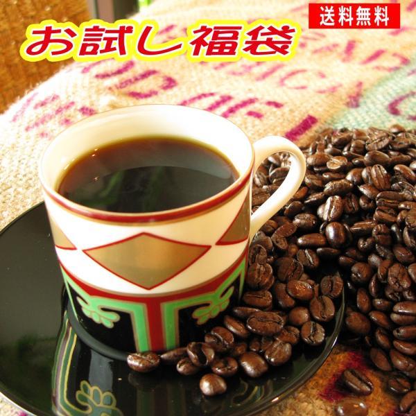 コーヒー豆 お試し 浅煎り 中深煎り ブラジル120g マンデリンブレンド120g (清流長良川)メール便 セール コーヒー豆 粉 挽き 挽く ポイント消化 安い 食品 coffeebaka