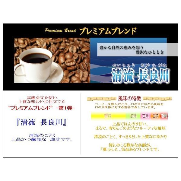 コーヒー豆 お試し 浅煎り 中深煎り ブラジル120g マンデリンブレンド120g (清流長良川)メール便 セール コーヒー豆 粉 挽き 挽く ポイント消化 安い 食品 coffeebaka 05