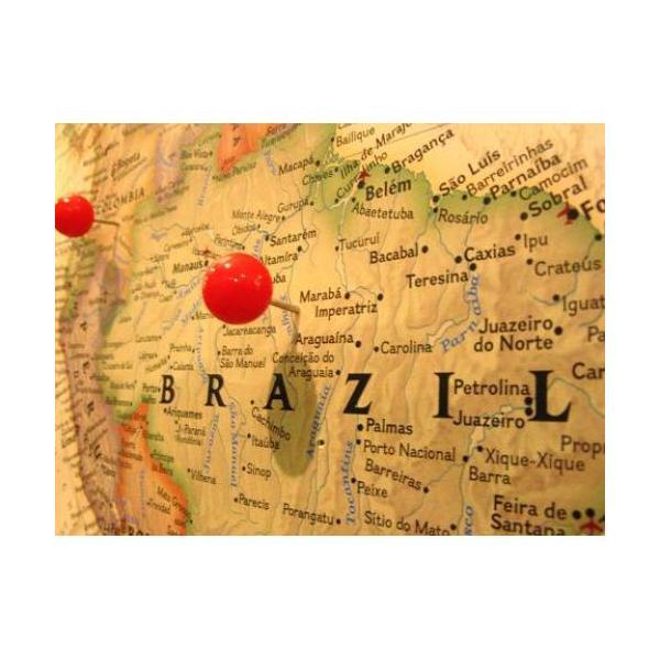 ブラジル 100g 宅急便 コーヒー豆/ナッツのような、甘く香ばしい華やかな香り  ブラジル・サントス・No.2・スクリーン1|coffeebaka