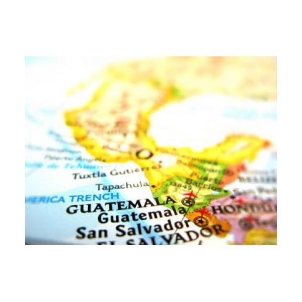 グァテマラ 200g 宅急便 コーヒー豆/豊かなコクと甘みに芳醇な香り でもアフターテイストはとっても爽やか  グァテマラSH|coffeebaka|02