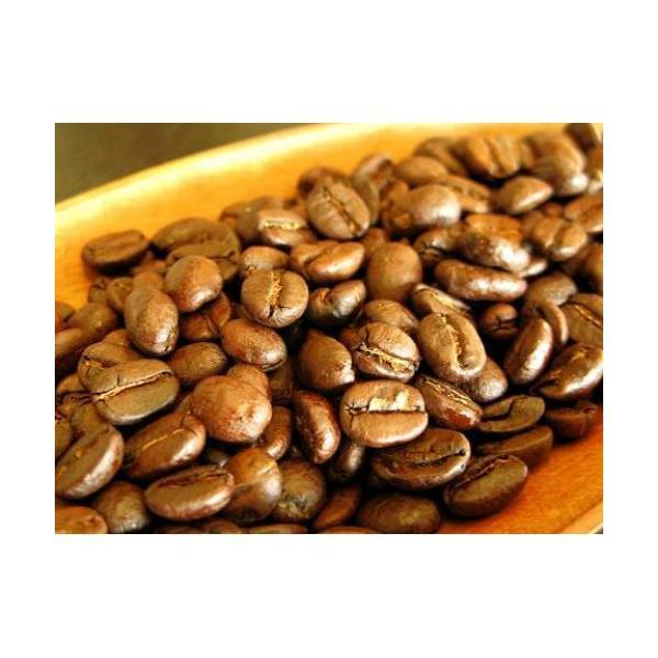 ホンジュラス 200g 宅急便 コーヒー豆/ココアのような優しい風味 疲れた心と体を癒してくれる癒し系珈琲   ホンジュラスH coffeebaka