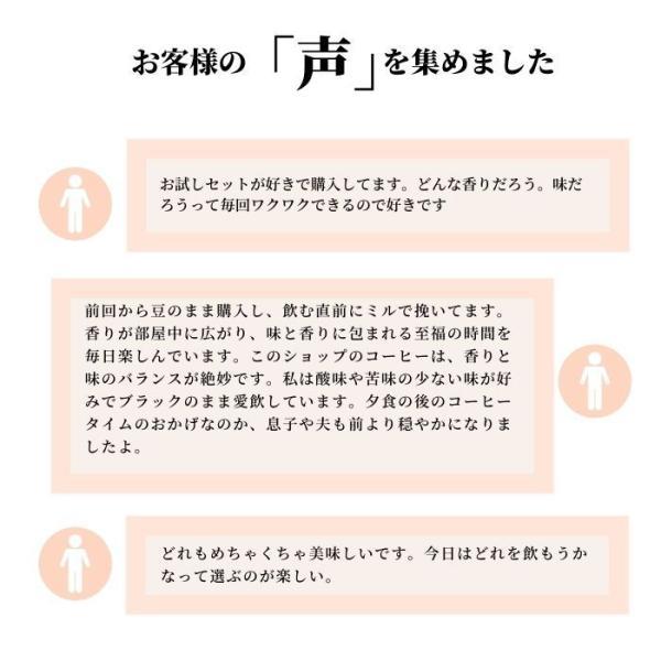 月替わりオススメ珈琲3種(200g×3袋)|coffeeyabu|02