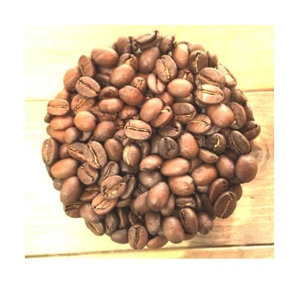 コーヒー豆 クラシックマルカラ ホンジュラス 200g|coffeeyabu