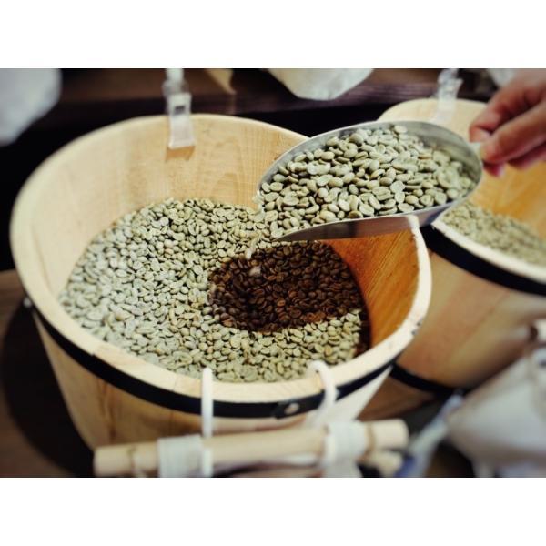 コーヒー豆 クラシックマルカラ ホンジュラス 200g|coffeeyabu|02