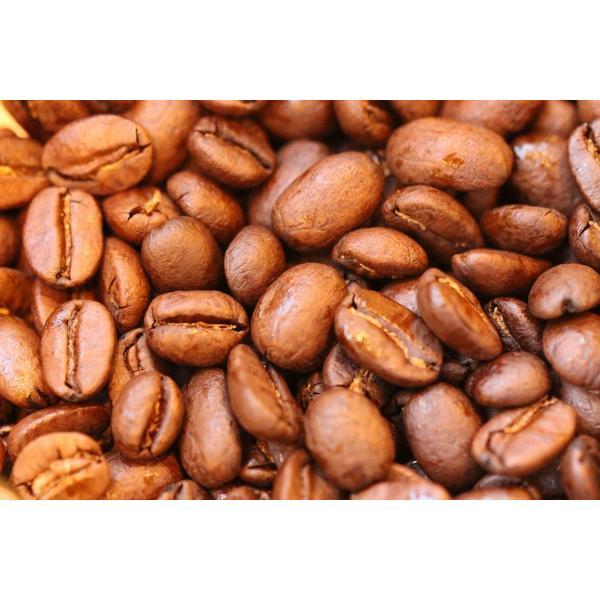 コーヒー豆 クラシックマルカラ ホンジュラス 200g|coffeeyabu|04