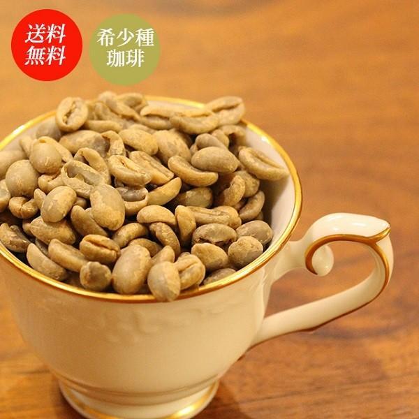 コーヒー豆 ラエスメラルダ農園 ゲイシャ パナマ 200g|coffeeyabu