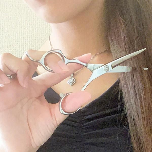 ハサミ 髪 匠の技 ステンレス製ヘアカットはさみ ( ヘアカットハサミ ヘアカット 散髪ハサミ )