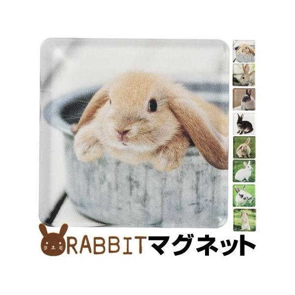 特価 マグネット 磁石 アニマルマグネット RABBIT うさぎ ANIMAL MAGNET ( 冷蔵庫 収納 ウサギ 文房具 )