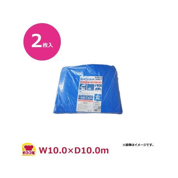 サンキョウプラテック ブルーシート #3000 厚手 10m×10m 2枚入 BS-30100100(送料無料、代引不可)