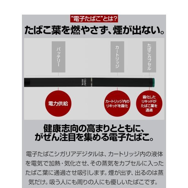 プルームテック バッテリー 電子タバコ 本体 スターターキット 爆煙 ploom tech お知らせ機能 コンパチブル品 Cigallia シガリアデジタル|coroya|05