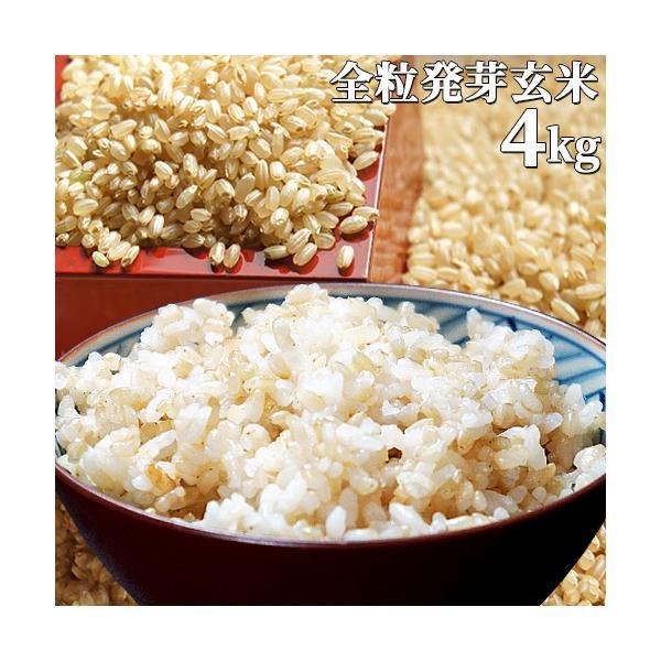 大分県産 無洗米 手作り発芽玄米 4kg(1kg真空パック×4袋) 準無農薬(減農薬) スタリオン日田 送料無料