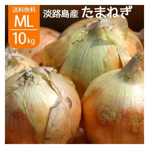 淡路島 玉ねぎ サラダたまねぎ 淡路島産 L〜2L 10kg