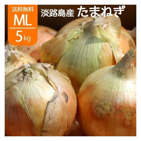 淡路島 玉ねぎ サラダたまねぎ 淡路島産 L〜2L 5kg