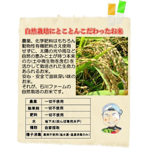 玄米10kg  石川ファーム 自然栽培米/無農薬|crea193|03
