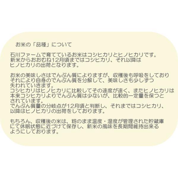 石川ファーム 自然栽培米 玄米10kg /無農薬|crea193|05