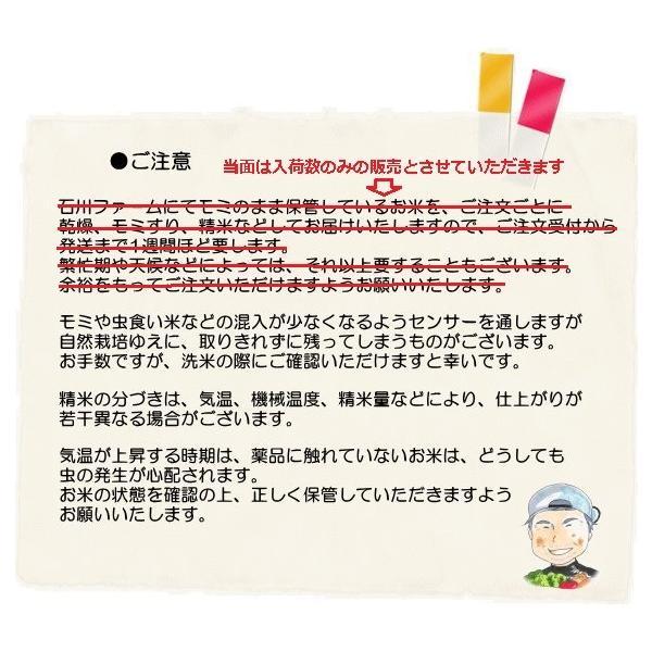 石川ファーム 自然栽培米 玄米10kg /無農薬|crea193|07