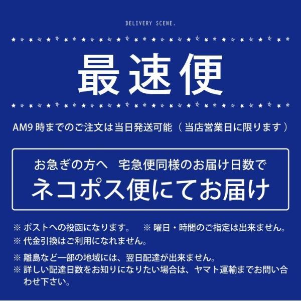 お急ぎ便 お名前アイロンシール キャラクタータイプ お名前シール 14001|creaform|02