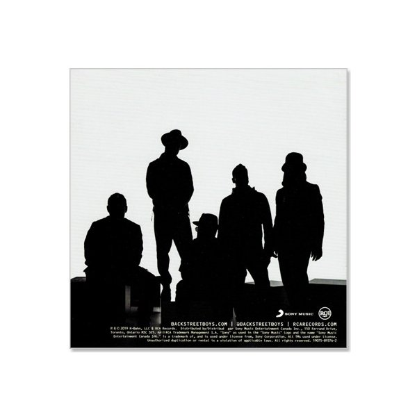 DNA BACKSTREET BOYS / バックストリート・ボーイズ【輸入盤】(CD)|csc-online-store|02