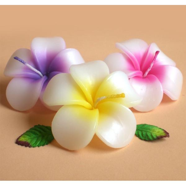 プルメリア フローティングキャンドル アソート 12個入り / 水に浮かぶ 香りつきアロマキャンドル 1個あたり206円 ハワイアン南国リゾート|csselect|02