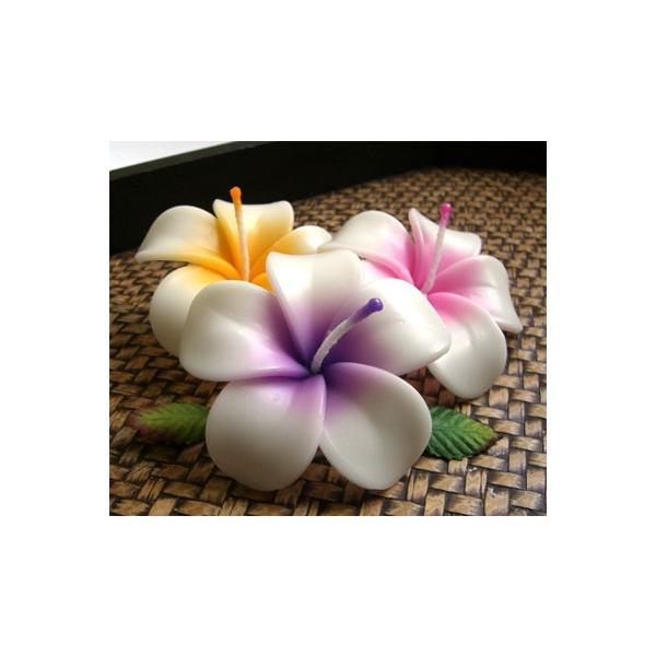 プルメリア フローティングキャンドル アソート 12個入り / 水に浮かぶ 香りつきアロマキャンドル 1個あたり206円 ハワイアン南国リゾート|csselect|07