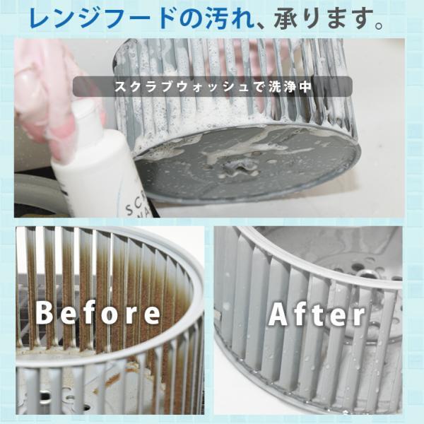 不織布スポンジプレゼント SCRUB WASH 100ml PLARTA120ml 掃除 セット コーティング マルチクリーナー 送料無料|cubic-square|08