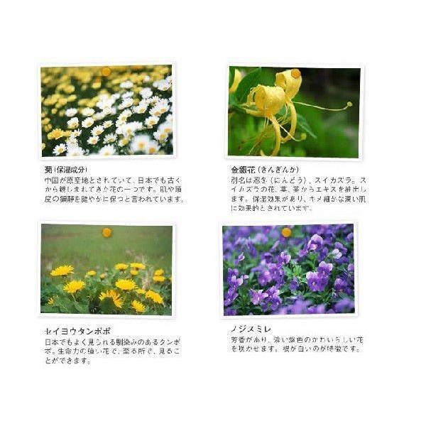 YUAN SOAP ユアンソープ 月桃(ゲットウ)コンディショナー 250ml (阿原 潤髪乳 無添加 ノンシリコン スカルプ)|cufflink|02