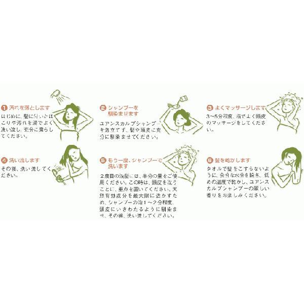 YUAN SOAP ユアンソープ 苦瓜(にがうり)スカルプシャンプー 250ml (阿原 洗頭水 無添加 ノンシリコン) cufflink 03