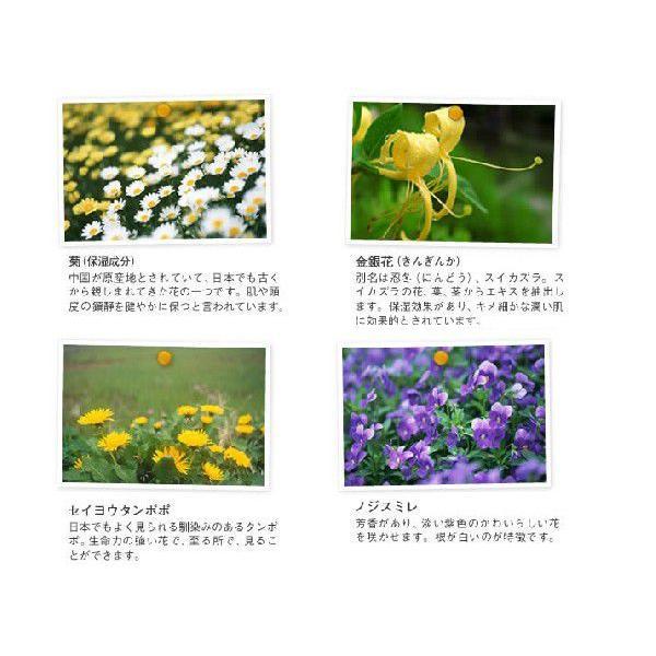 YUAN SOAP ユアンソープ 桑菊花(ソウキッカ)スカルプシャンプー 250ml (阿原 洗頭水 無添加 ノンシリコン)|cufflink|02