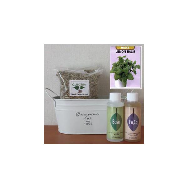 レモンバームの栽培セット豊作セット【液体肥料付き】/プランターホワイト