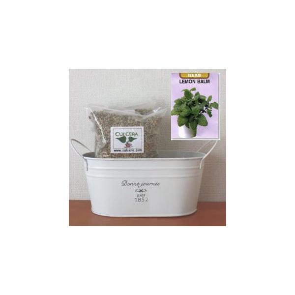 レモンバームの栽培セット標準セット【液体肥料なし】/プランターホワイト