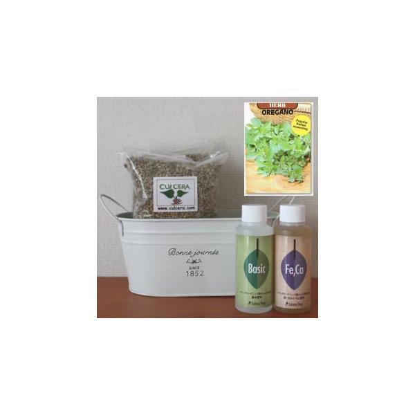 オレガノの栽培セット豊作セット【液体肥料付き】/プランターホワイト