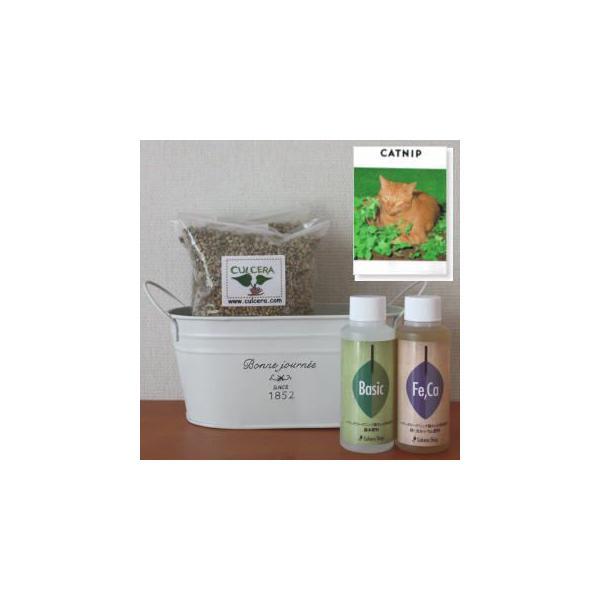 キャットニップの栽培セット豊作セット【液体肥料付き】/プランターホワイト